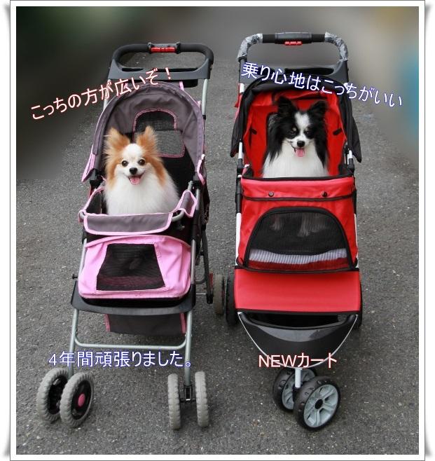 cart00400.jpg