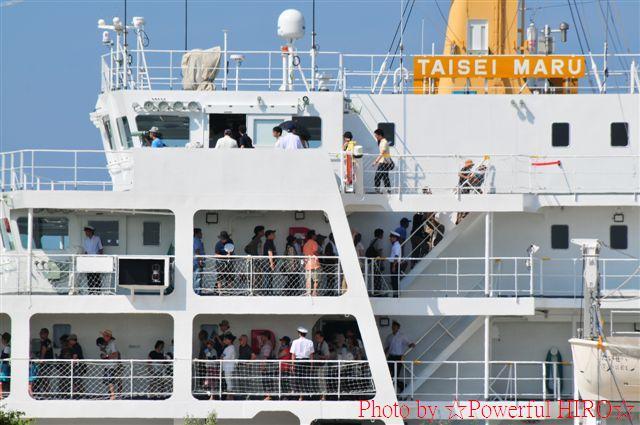 新旧海王丸 W展帆 (3)