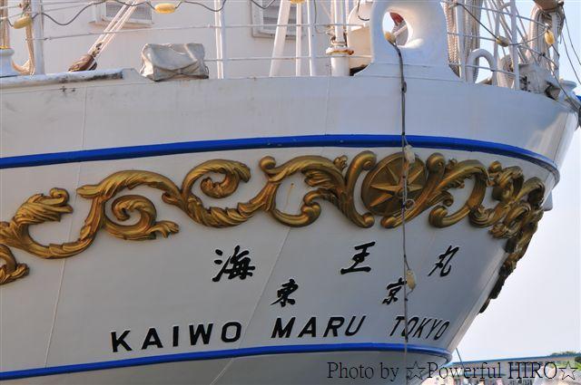 新旧海王丸 W展帆 (8)