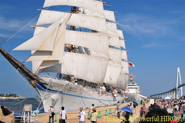 新旧海王丸 W展帆 (10)