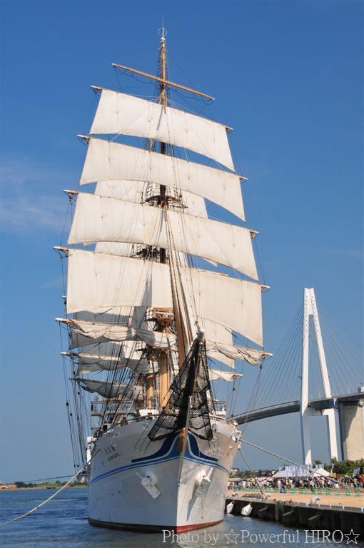 新旧海王丸 W展帆 (12)