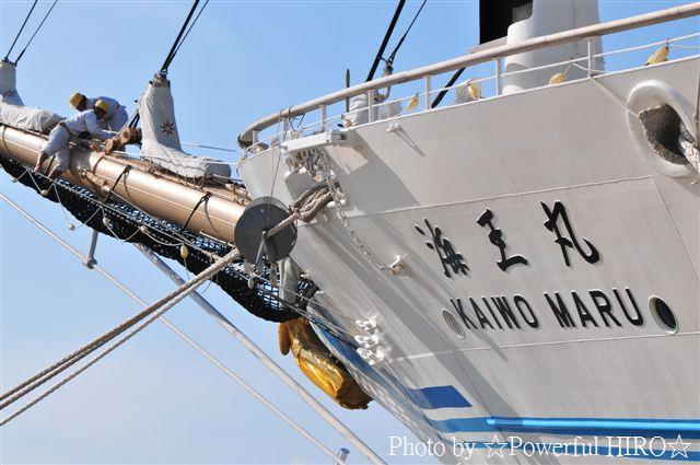 新旧海王丸 W展帆 (20)