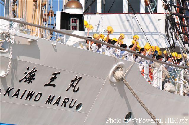新旧海王丸 W展帆 (23)