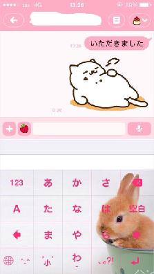 new_attachment00.jpg