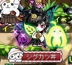 Maple150620_221937 (2)