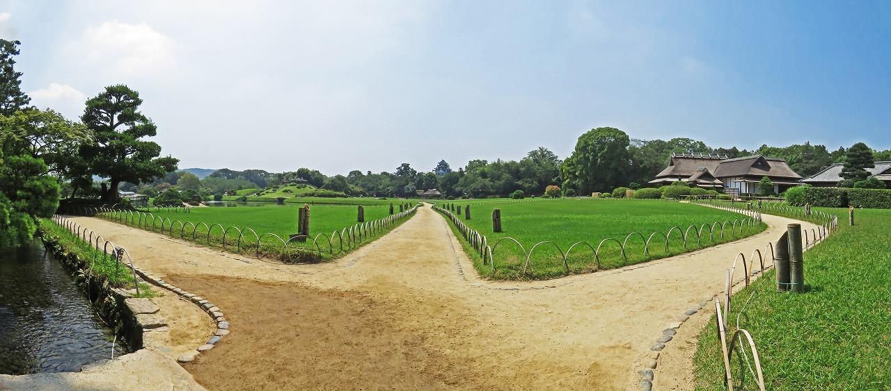 s-20150801 後楽園幻想庭園開始日の今日の朝の園内ワイド風景 (1)