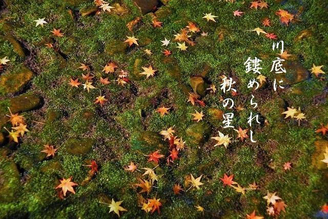 後楽園の紅葉2