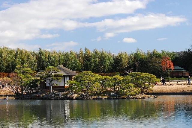 沢の池中島(テスト撮り)