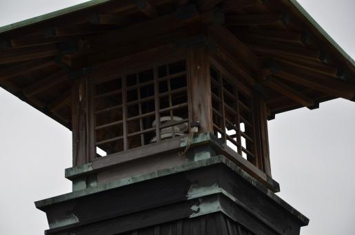 18-今津灯台と武庫大橋 -3