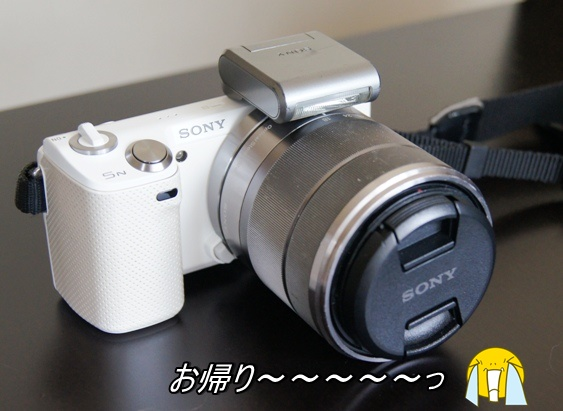DSC02752_2015073014190655c.jpg