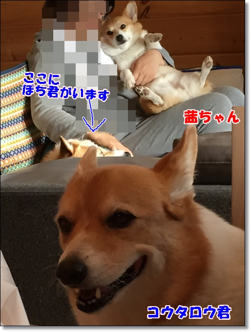 IMG_0076.jpg