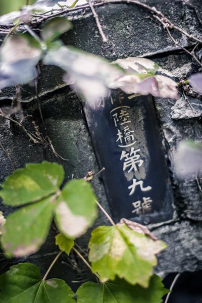 2013sakata_106.jpg