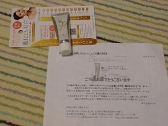 ブログ用P1040691-20150101-092120