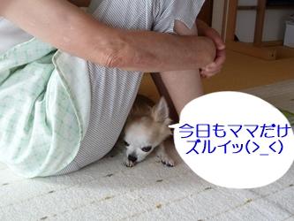 ブログ用20141002-083759