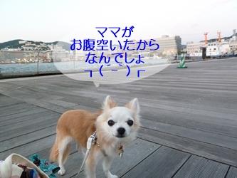 ブログ用20141007-181840