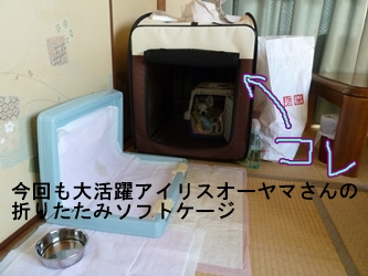 ブログ用20141006-153615