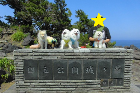 1伊豆高原城ケ島