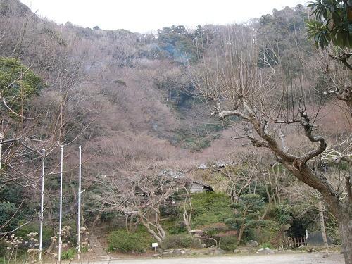 12徳富蘆花文学碑P1000258
