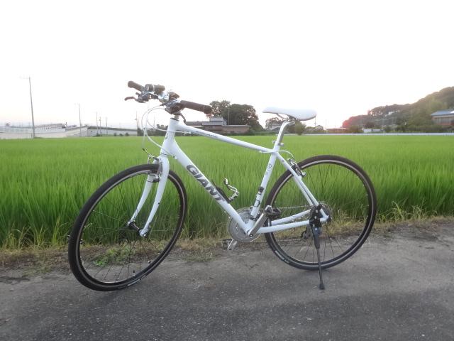 天王山 038
