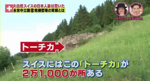 世界の日本人妻は見た! スイス民間防衛 2
