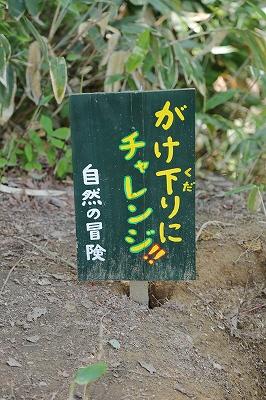 nagaoka20150610_0010.jpg
