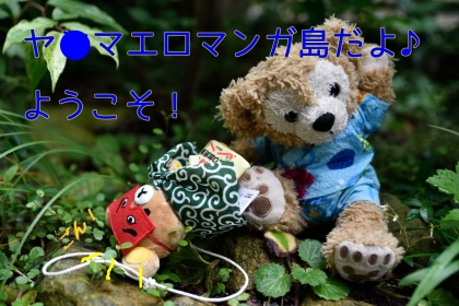 DSC_2329A.jpg