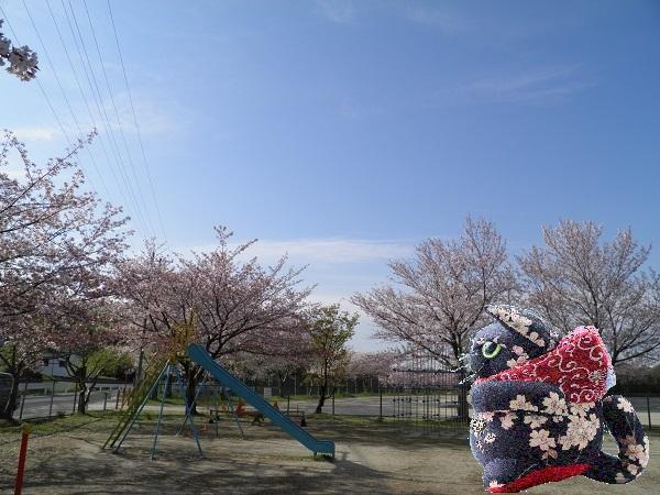 P4110089k.jpg