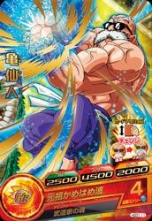HGD1-11亀仙人