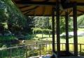 四阿から見る池
