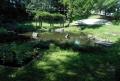 すり鉢状の底部の池