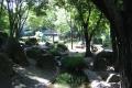 庭園の風情