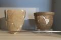 展示されていた土器