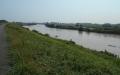 市の西側を流れる江戸川