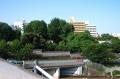 聖橋から見る湯島聖堂