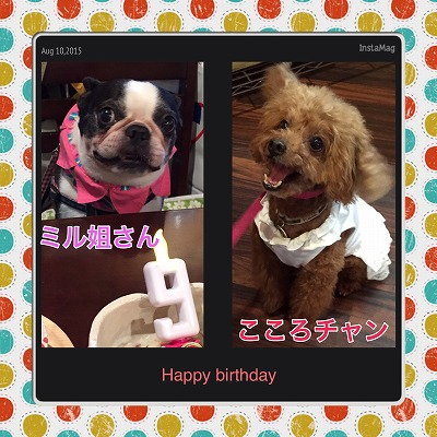 ミル姐さん&こころチャン/BirthdayGirls♪♪