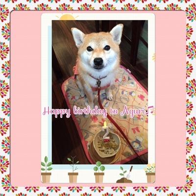 アグリちゃん/BirthdayGirl♪♪