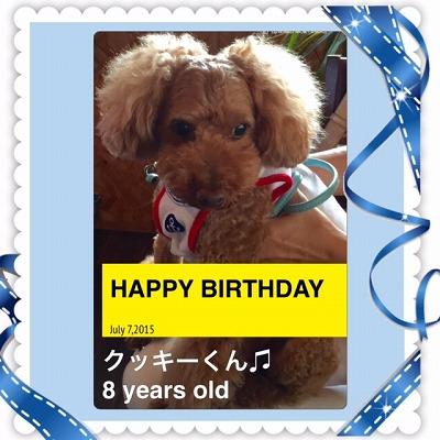 クッキーくん/BirthdayBoy♪♪