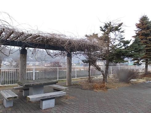 コイカクシ川2