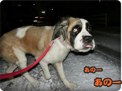 ハイジさっちゃん071