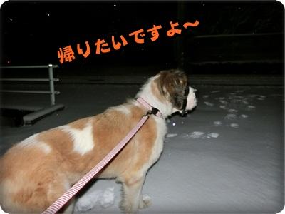 ハイジさっちゃん077