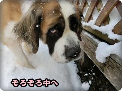 ハイジ雪008
