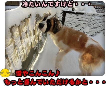 ハイジ雪003
