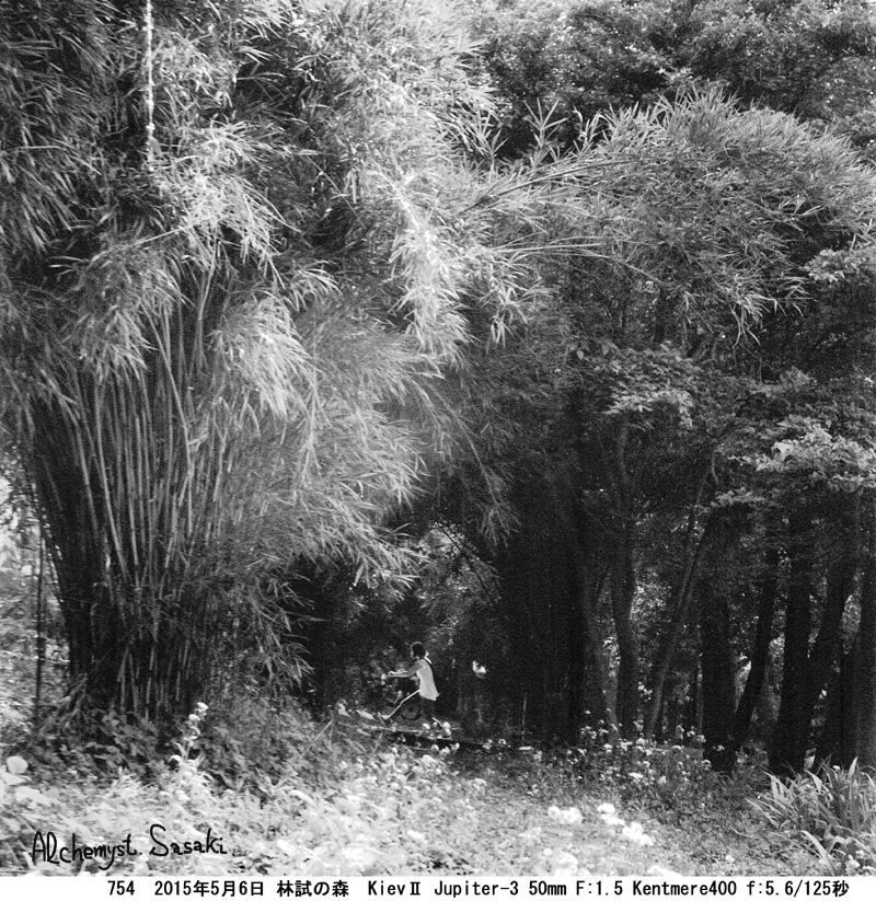 林試の森754-8 Ⅱ