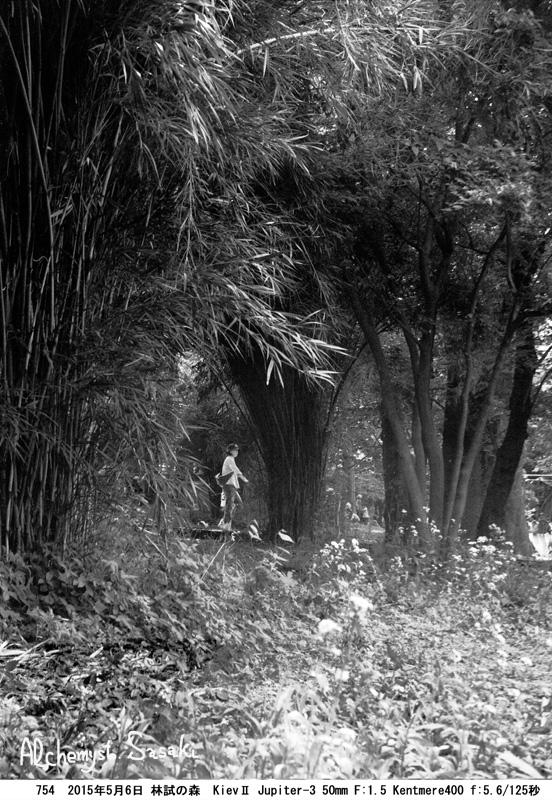 林試の森754-9 Ⅲ