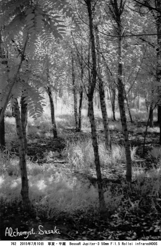 植林762-122
