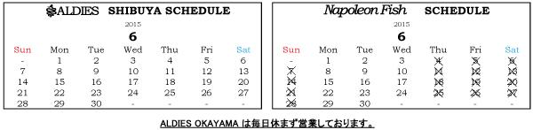 6月営業日カレンダー2