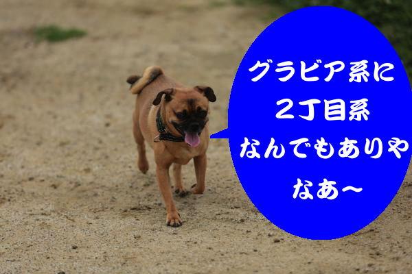 IMG_4706_convert_20150703200845.jpg