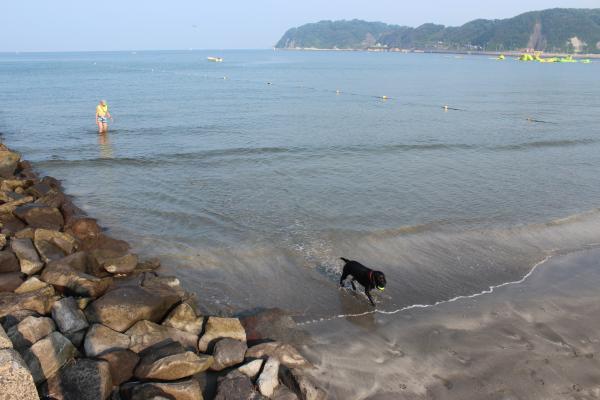 海遊び&川遊び5