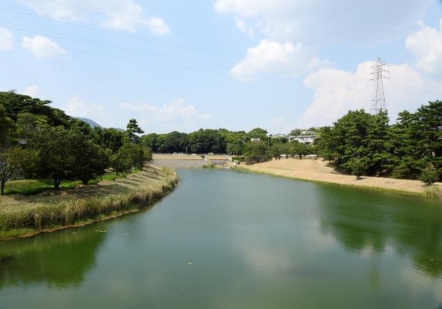 ニテコ池2015-08-08 087 (640x448)