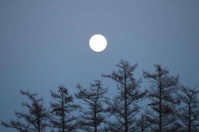 満月(かぜっぷさん・2015 ブルームーンの詩)